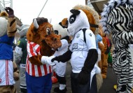Bully Mascot at the Grand National 2012